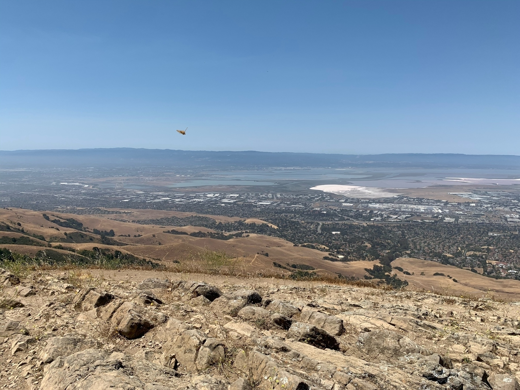 view looking west from the top of Mission Peak towards the San Franscisco Bay