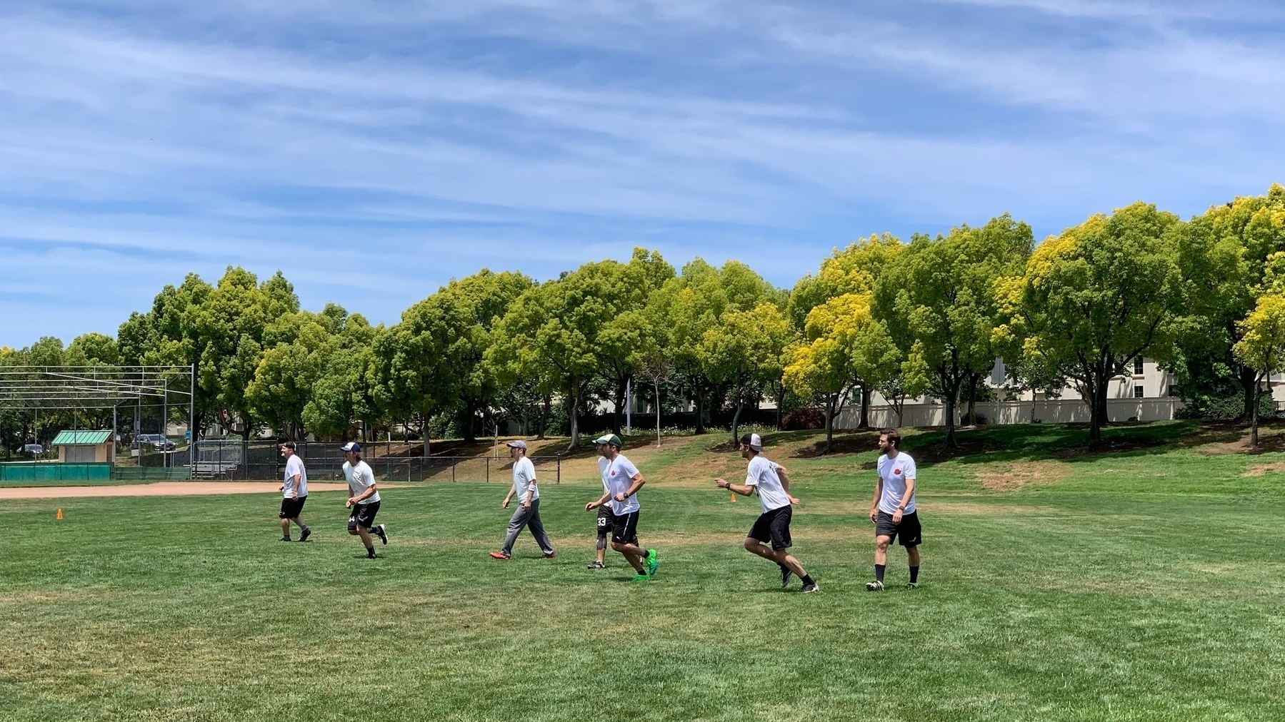 seven players on an ultimate field, first steps after the pull