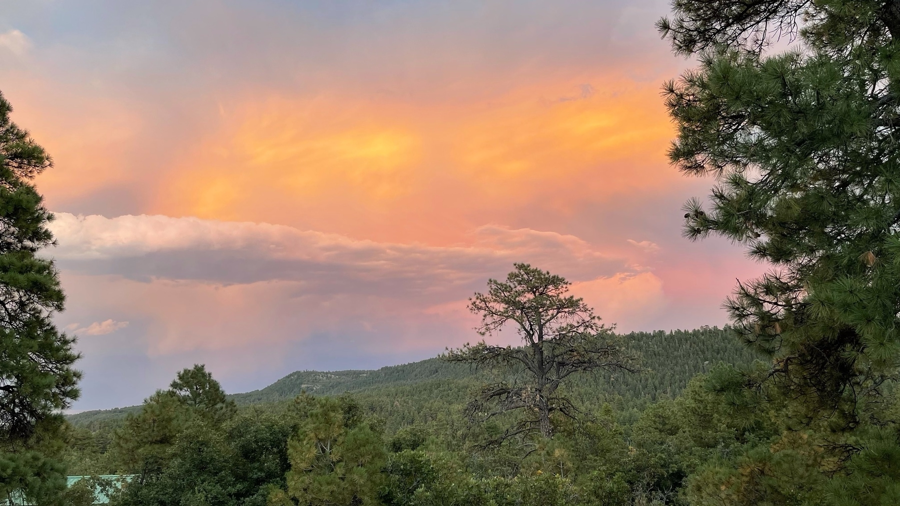sunset overlooking sloping tree covered mountain side