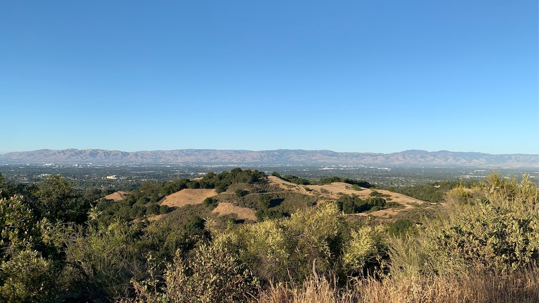 San Francisco South Bay as seen from the Stevens Creek Reservoir Coyote Trail